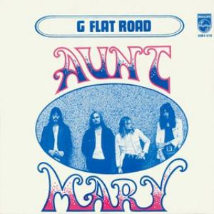 Aunt Mary G Flat Road album cover