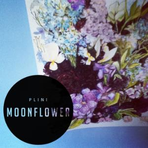 Moonflower by PLINI album cover