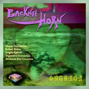 Organon by BACKNEE HORN album cover