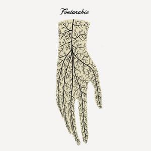 Fontarabie by FONTARABIE album cover