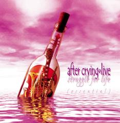 After Crying - Struggle For Life (Essential) CD (album) cover