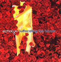Echolyn - Suffocating The Bloom CD (album) cover