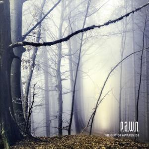 The Gift of Awareness by P.A.W.N. album cover