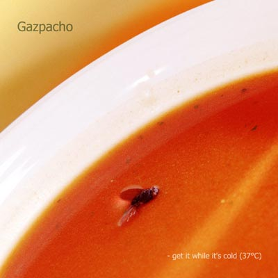 Gazpacho - Get It While It's Cold (37°C) CD (album) cover