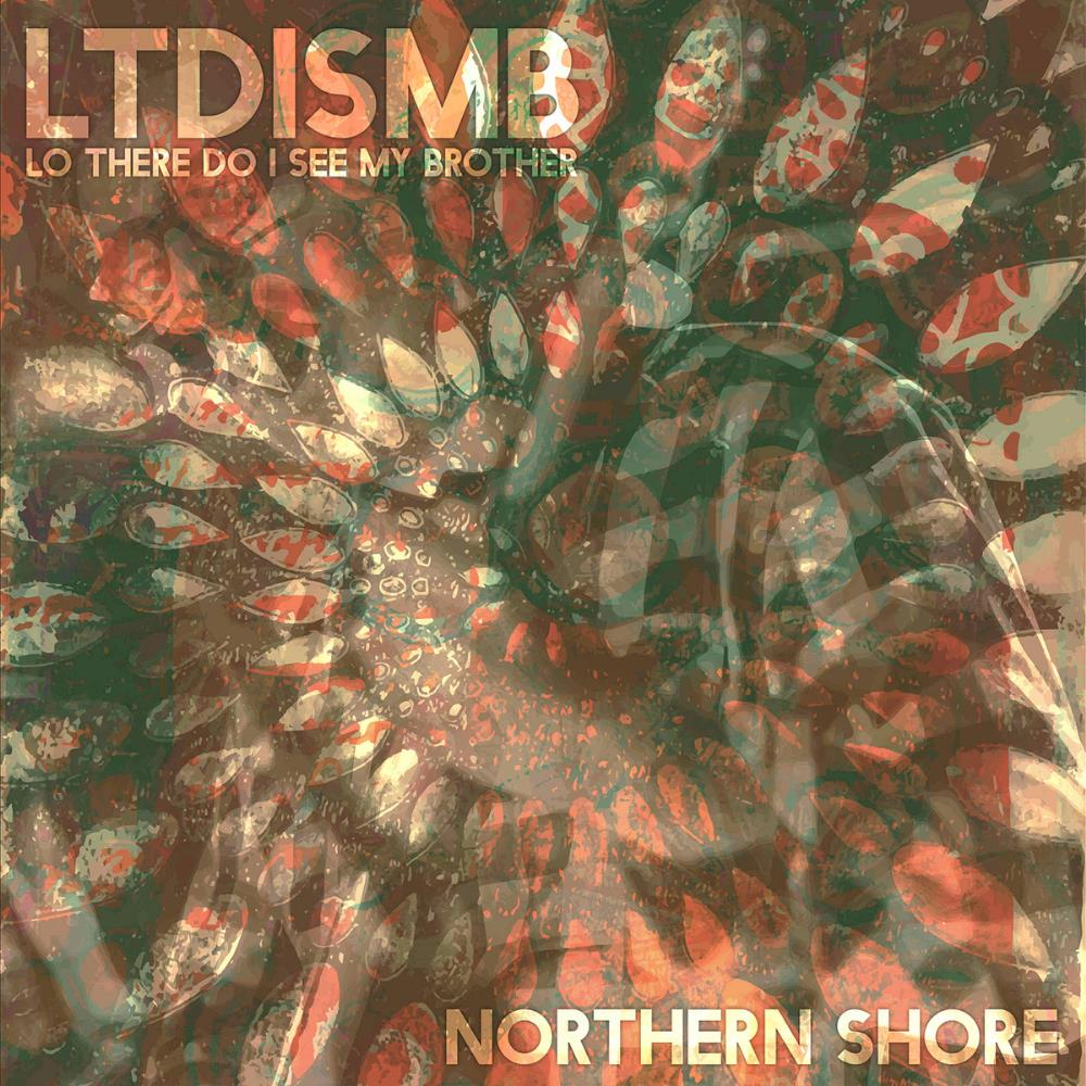 Northern Shore by LO' THERE DO I SEE MY BROTHER album cover