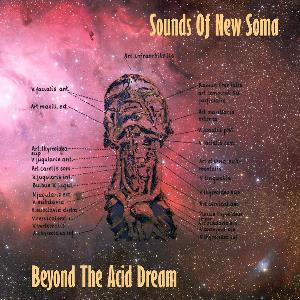 Beyond The Acid Dream by SOUNDS OF NEW SOMA album cover