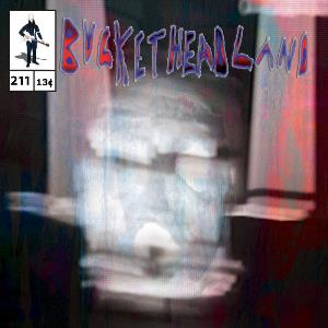 Buckethead - Screen Door CD (album) cover