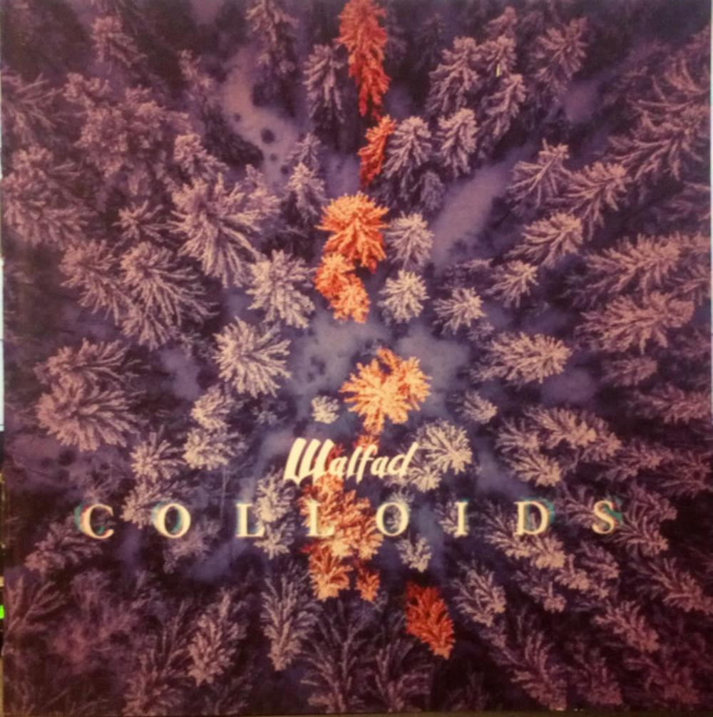 Colloids by WALFAD album cover