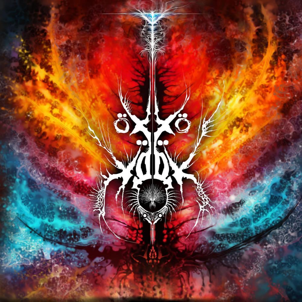 Y by ÖXXÖ XÖÖX album cover