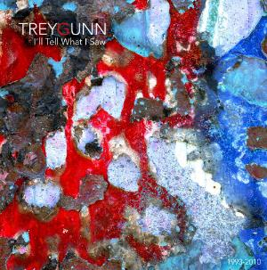 Trey Gunn I'll Tell What I Saw album cover