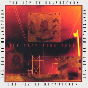 Trey Gunn - The Joy of Molybdenum CD (album) cover