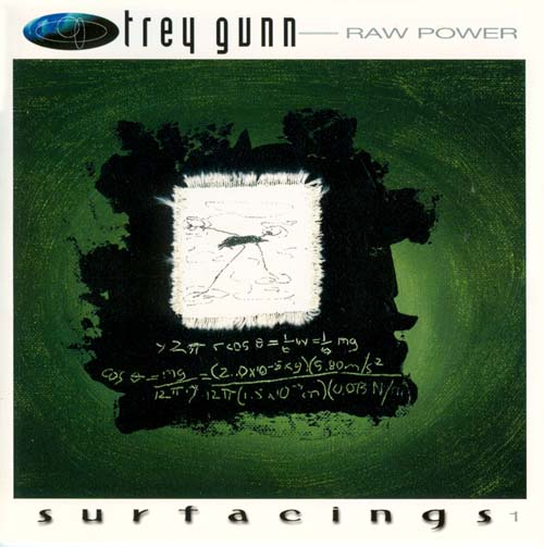 Trey Gunn Raw Power album cover