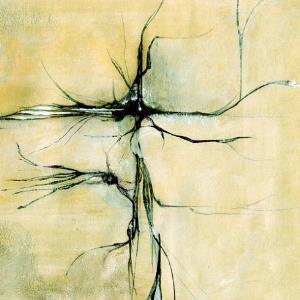 Sincère autopsie de la finesse by [BLEU] album cover